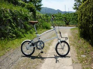 自転車の いい自転車 盗まれる : ミヤタ アライト16: うさ探偵 ...